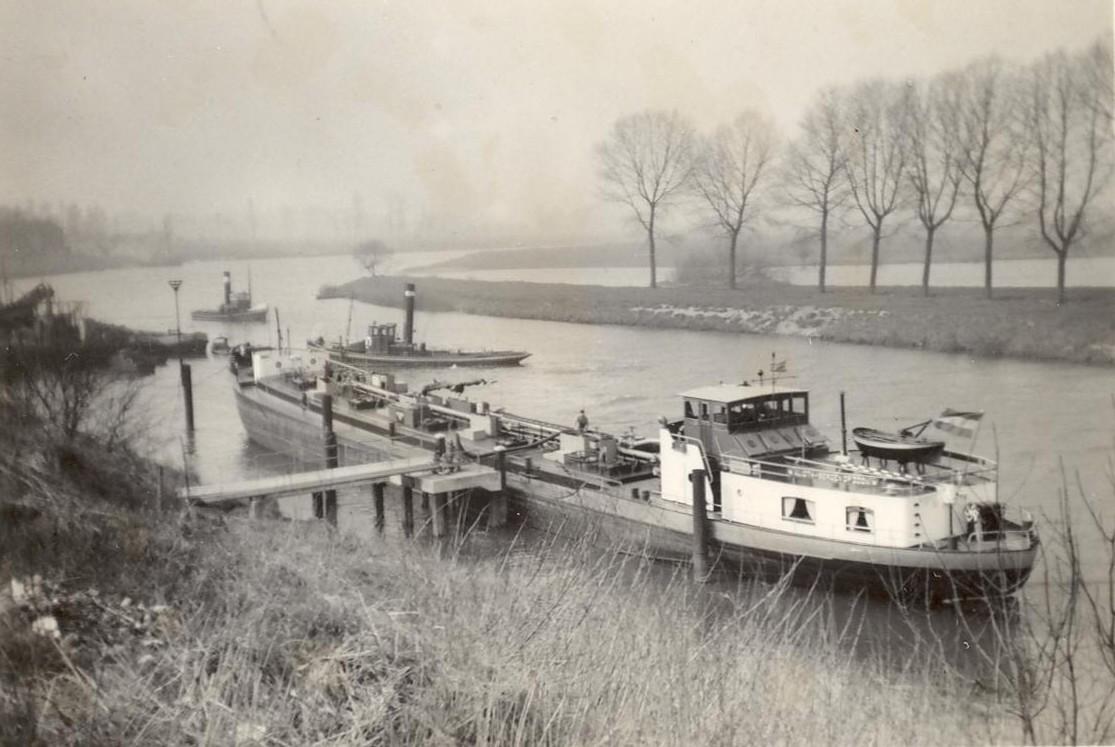 1956 Maas Linne.jpg