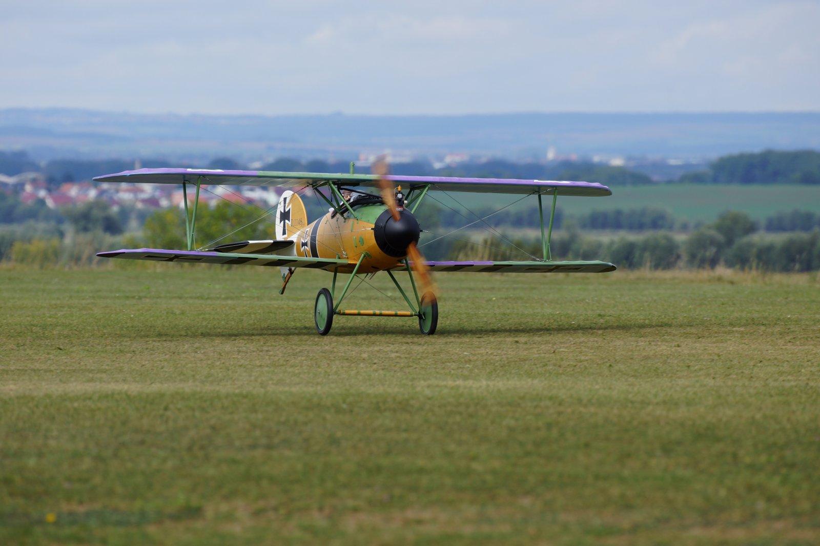 Albatros JW (1) - kopie.JPG