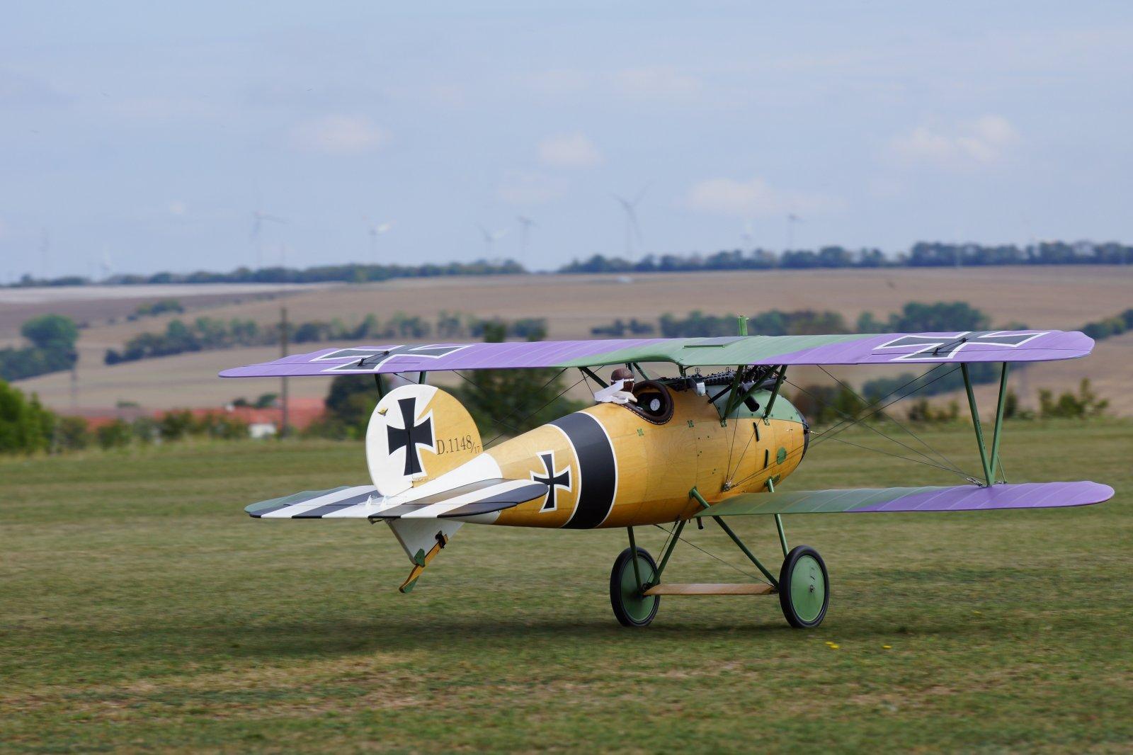 Albatros JW (10) - kopie.JPG