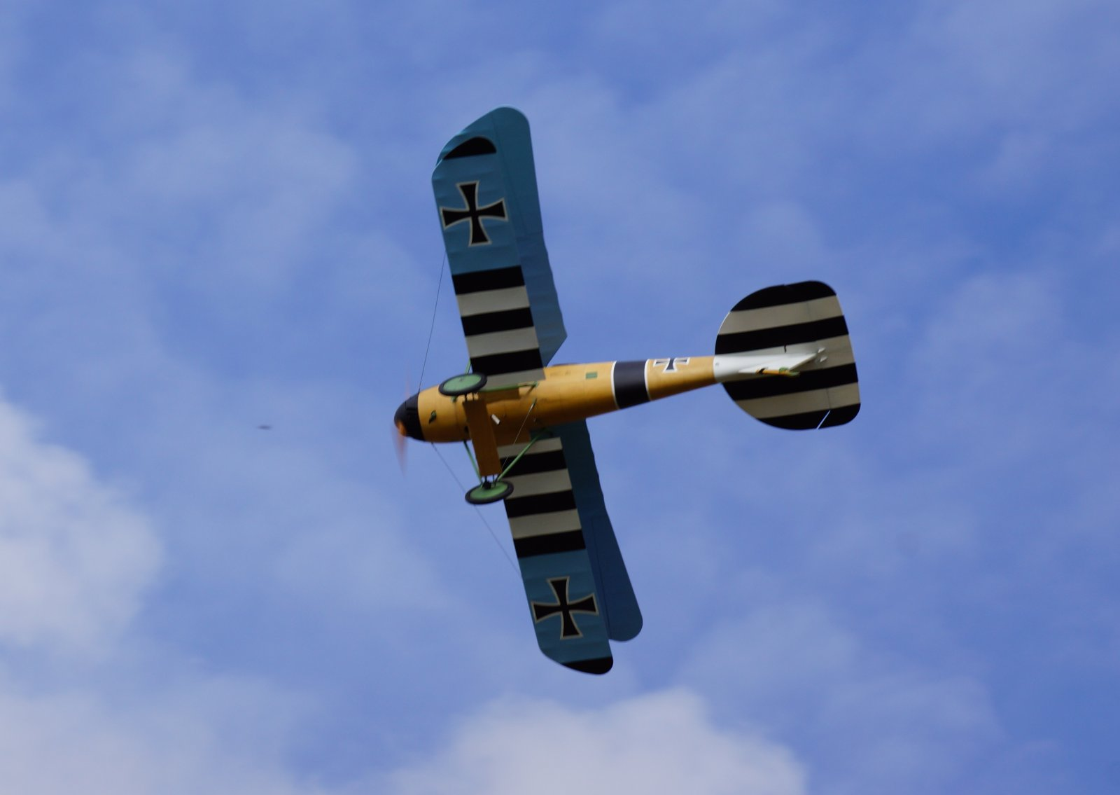 Albatros JW (11).JPG