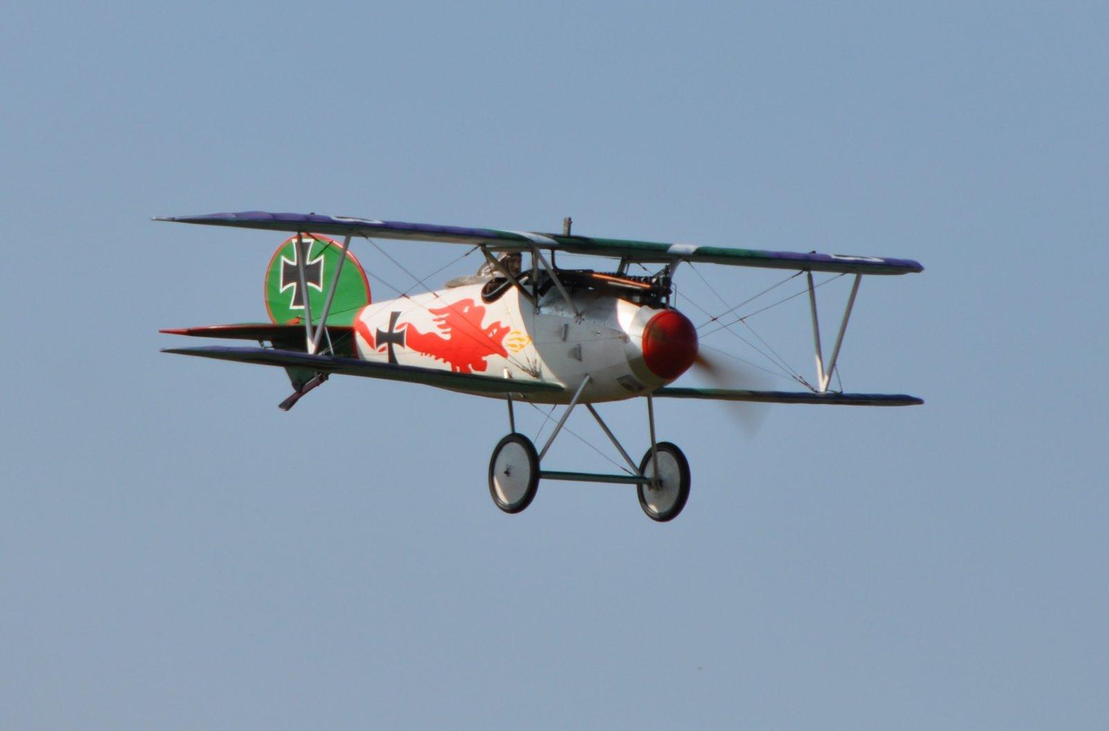 Albatros JW (2).JPG