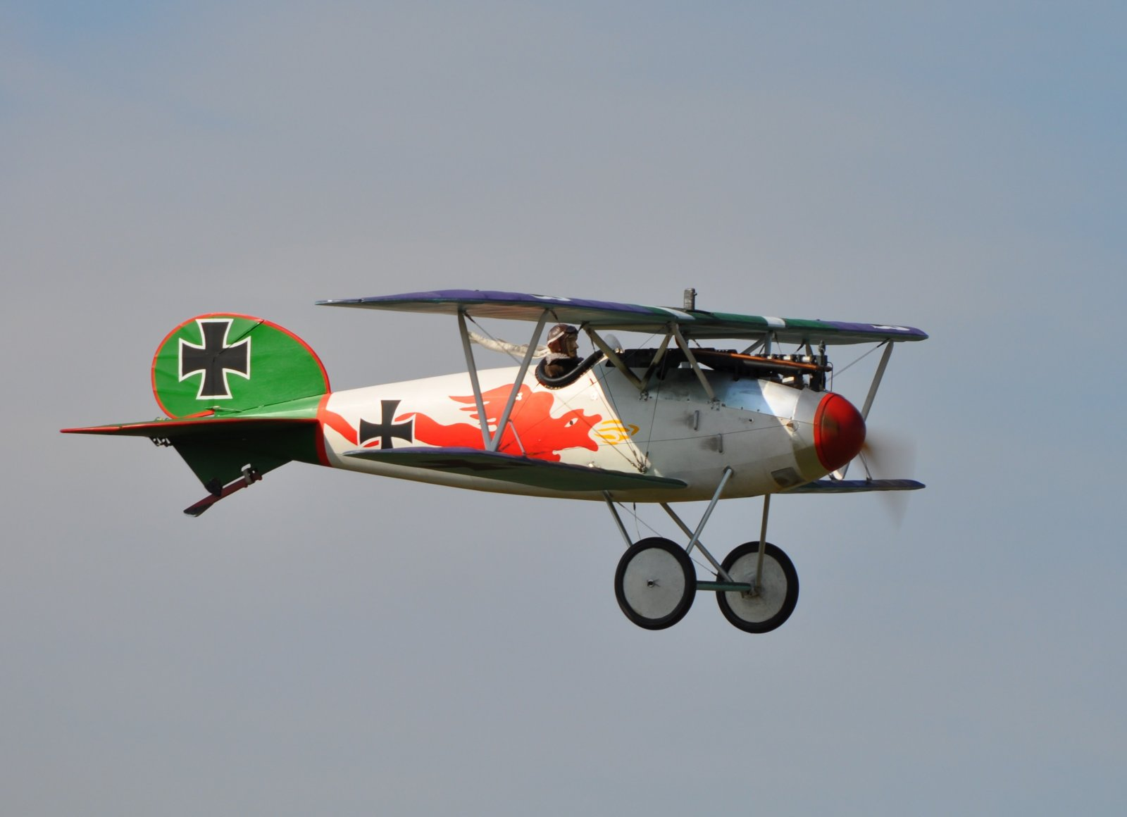 Albatros JW (3).JPG