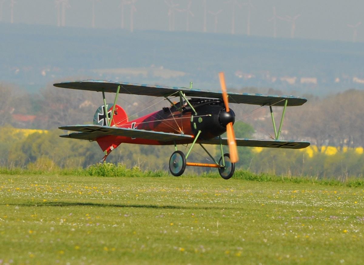 Albatros JW (5).JPG
