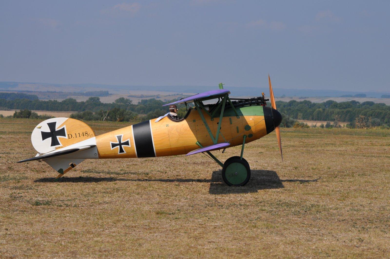 Albatros JW (7).JPG