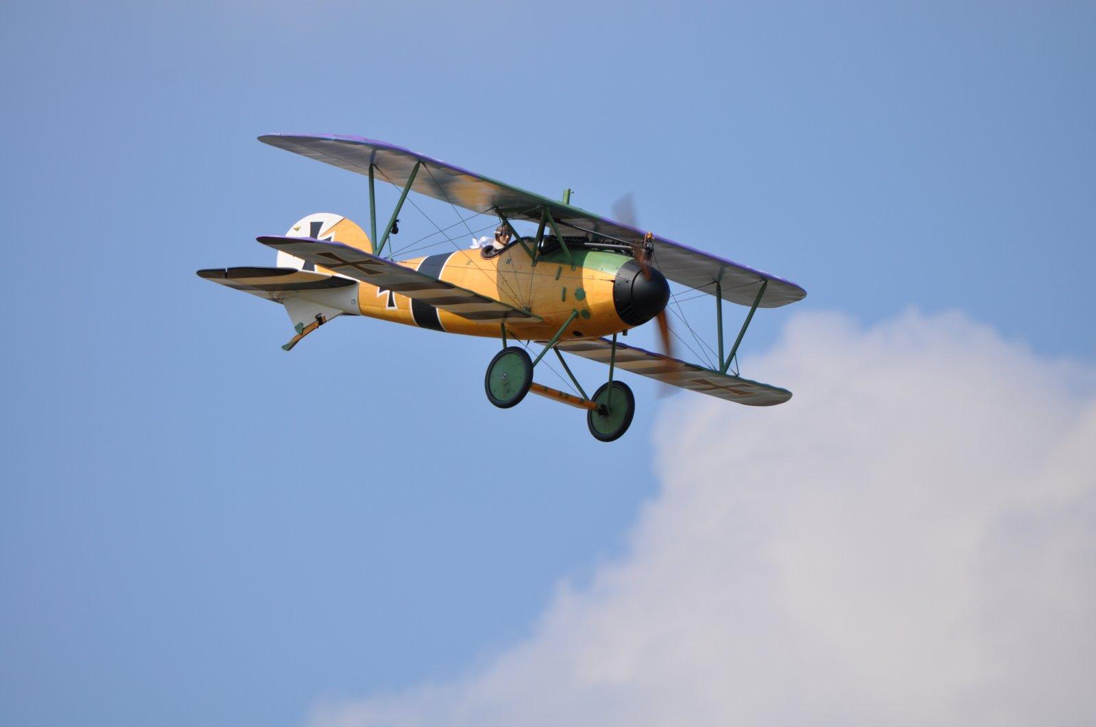 Albatros JW (8).JPG