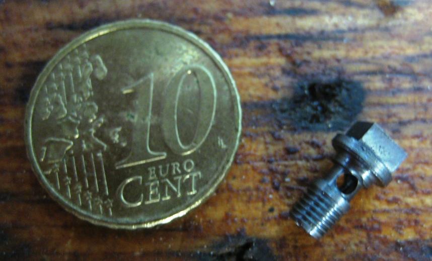 IMG_4859 small.JPG