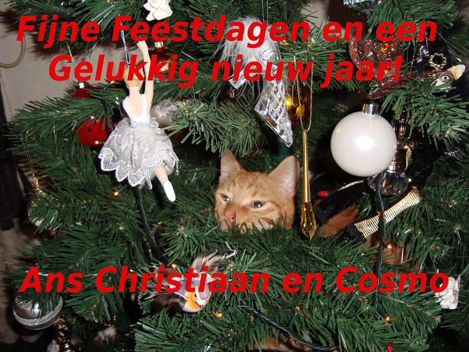 Kerst cossiegeheel.jpg